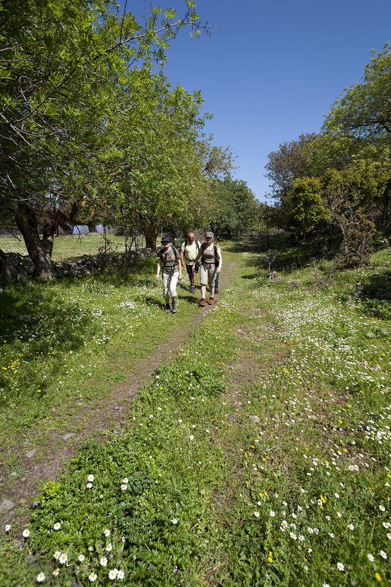 Die Wandergruppe auf dem Weg in die Caldera von Nisyros. (c) Tobias Schorr