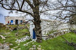 Die Gebäude stehen in einem kleinen Hain aus Walnuß- und Kastanienbäumen. (c) Tobias Schorr