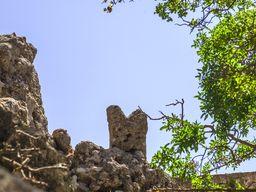 Der minoische Stieraltar auf der Nymphios-Hochebene auf Nisyros. (c) Tobias Schorr 2013