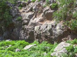 Im Süden der Hochebene gibt es diesen Felsen mit deutlich ausgearbeiteten Löchern, in denen sicher Balken für ein Dach lagen. Vielleicht war davor ein Gebäude? (c) Tobias Schorr 2013