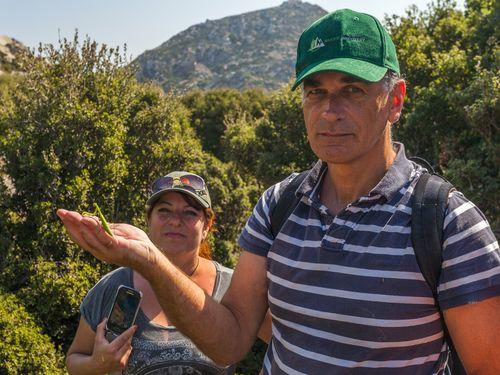 Ein Teilnehmer einer Wanderreise auf Nisyros hat eine Riesenheuschrecke in der Hand (c) Tobias Schorr