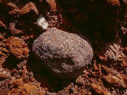 Vulkanische Bombe zwischen den Aschen eines uralten Vulkans. (c) Tobias Schorr