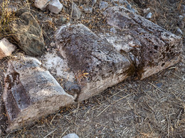 Antike Säulen auf der Halbinsel von Palia Epidavros (c) Tobias Schorr