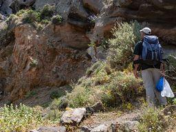Tom Pfeiffer an einer Stelle, wo die vulkanischen Gesteine Kontakt zu noch älteren Gesteinen haben. (c) Tobias Schorr