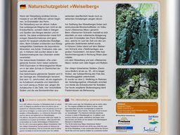 Infotafel Weiselberg. (c) Tobias Schorr