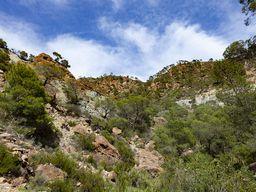 Το τοπίο του ηφαιστείου Σουσάκι (c) Tobias Schorr