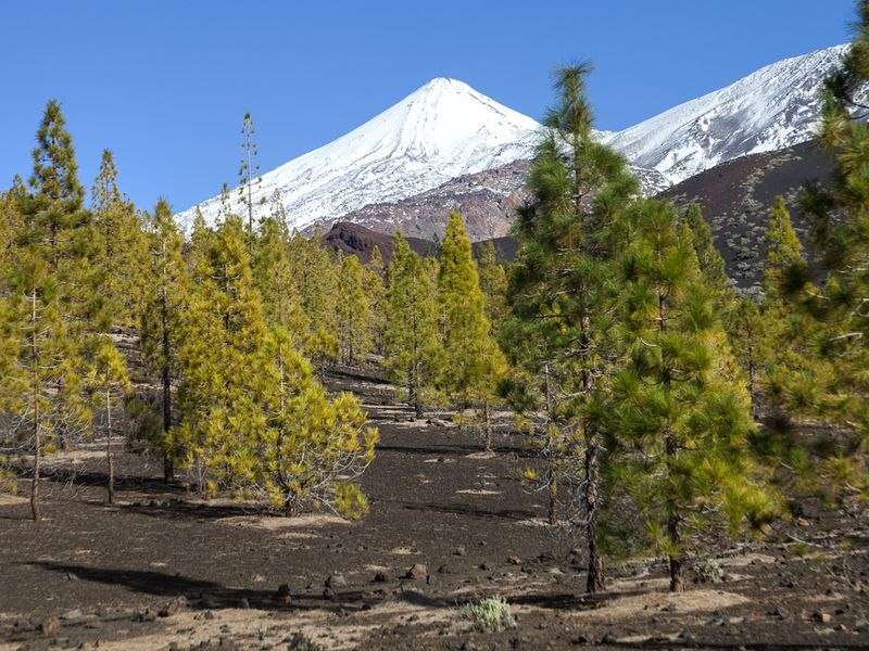 The top of Teide volcano may be covered by snow