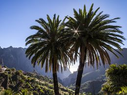 The mountain areas of Tenerife is great for photographers