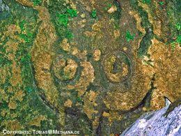 Diese antike Eule war bis 1987 unterhalb der Teufelsbrücke zu besichtigen. Heute liegt ein riesiger Fels vor ihr. (c) Tobias Schorr