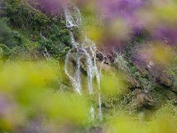 Wasserfall in der Schlucht Diavologefiro