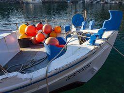Fischerboot mit Bojen
