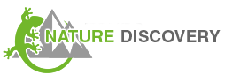 Nature Discovery Tours