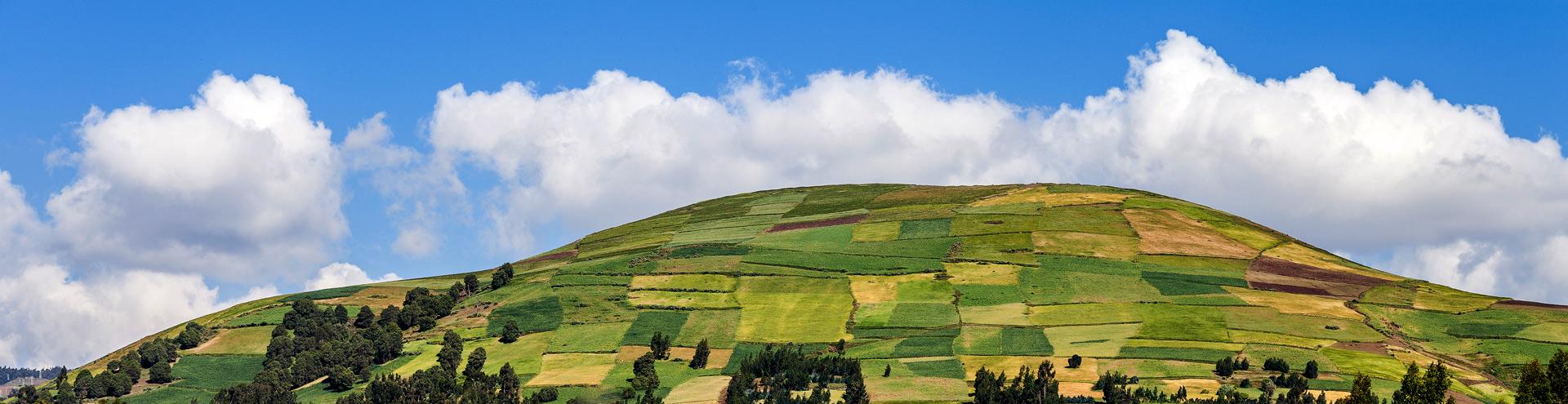 Das grüne Äthiopien
